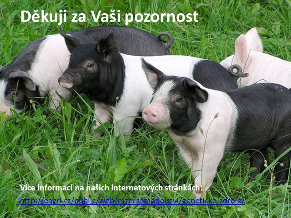 Děkuji za Vaši pozornost Více informací na našich internetových stránkách: http://eagri.cz/public/web/mze/zemedelstvi/geneticke-zdroje/