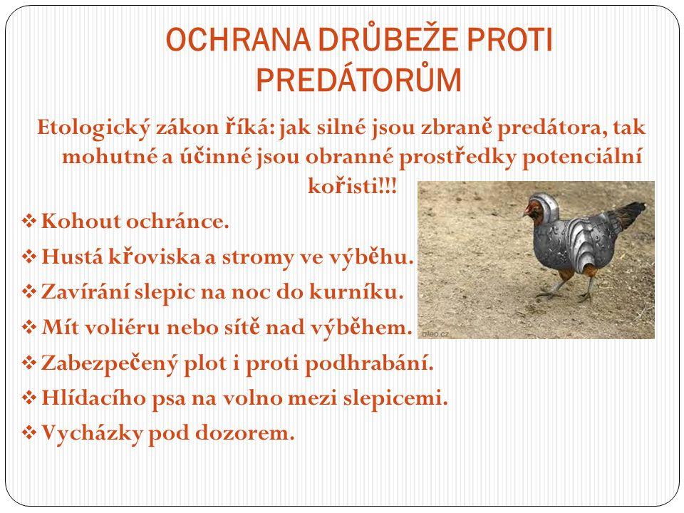 OCHRANA DRŮBEŽE PROTI PREDÁTORŮM Etologický zákon ř íká: jak silné jsou zbran ě predátora, tak mohutné a ú č inné jsou obranné prost ř edky potenciální ko ř isti!!.