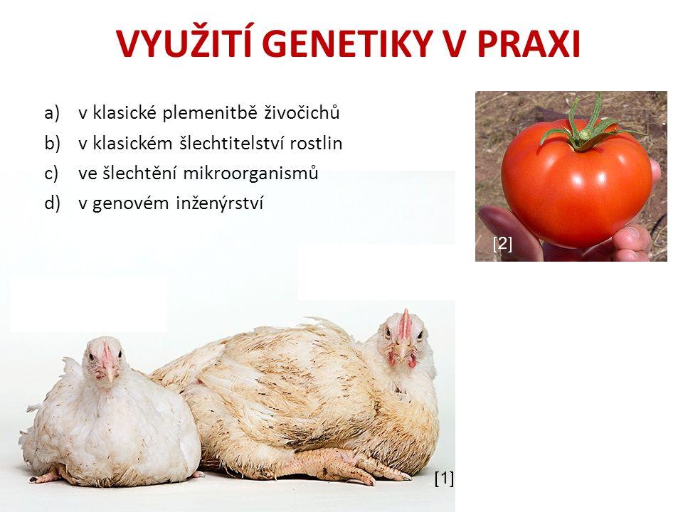 VYUŽITÍ GENETIKY V PRAXI a)v klasické plemenitbě živočichů b)v klasickém šlechtitelství rostlin c)ve šlechtění mikroorganismů d)v genovém inženýrství 11 22