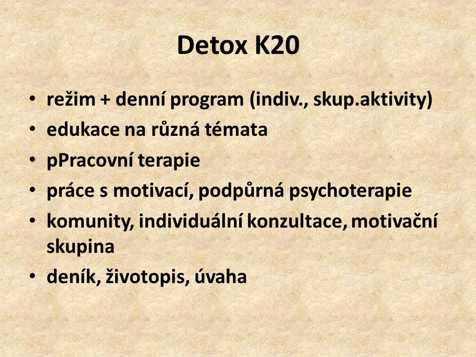 Detox K20 režim + denní program (indiv., skup.aktivity) edukace na různá témata pPracovní terapie práce s motivací, podpůrná psychoterapie komunity, i