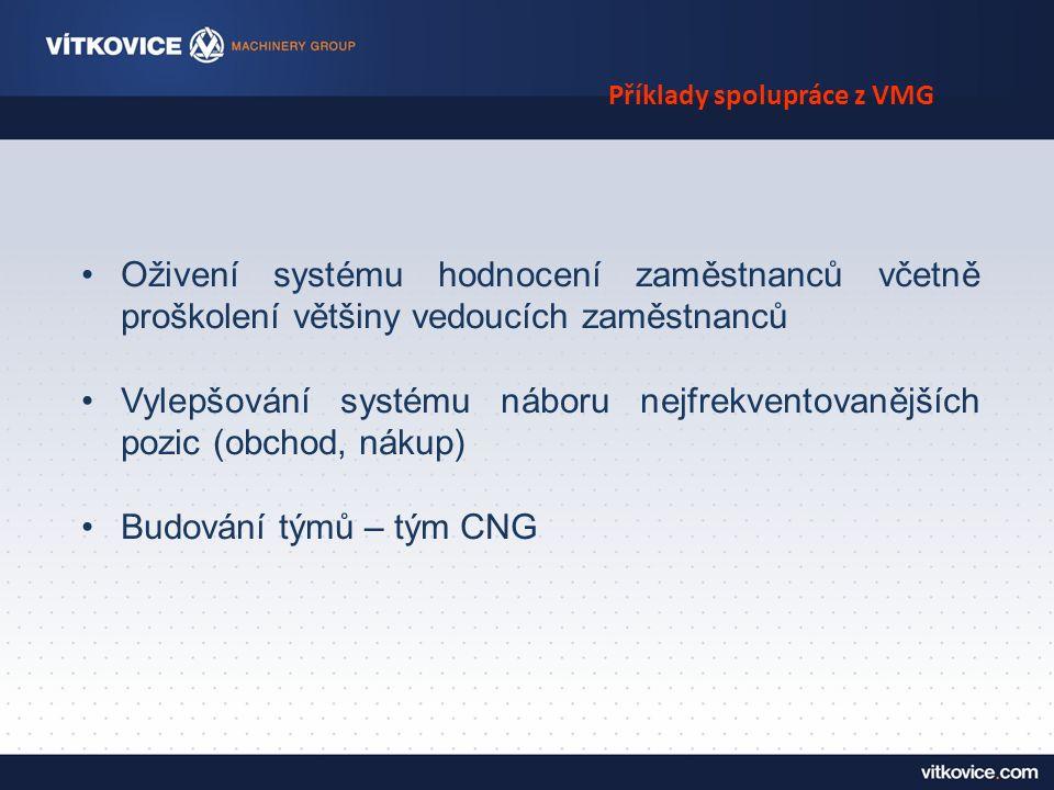 Příklady spolupráce z VMG Oživení systému hodnocení zaměstnanců včetně proškolení většiny vedoucích zaměstnanců Vylepšování systému náboru nejfrekventovanějších pozic (obchod, nákup) Budování týmů – tým CNG