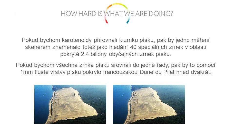 Pokud bychom karotenoidy přirovnali k zrnku písku, pak by jedno měření skenerem znamenalo totéž jako hledání 40 speciálních zrnek v oblasti pokryté 2.4 bilióny obyčejných zrnek písku.