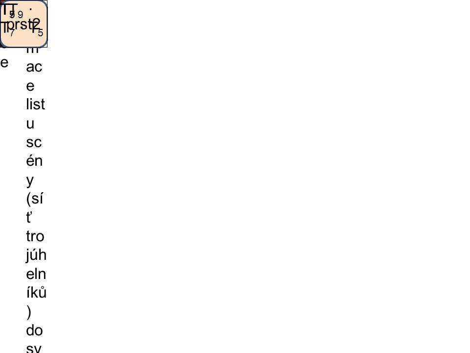 Relati vní transf ormac e Trans for m ac e list u sc én y (sí ť tro júh eln íků ) do sv ět ov ýc h so uř ad nic se skl ád á z po slo up no sti tra nsf