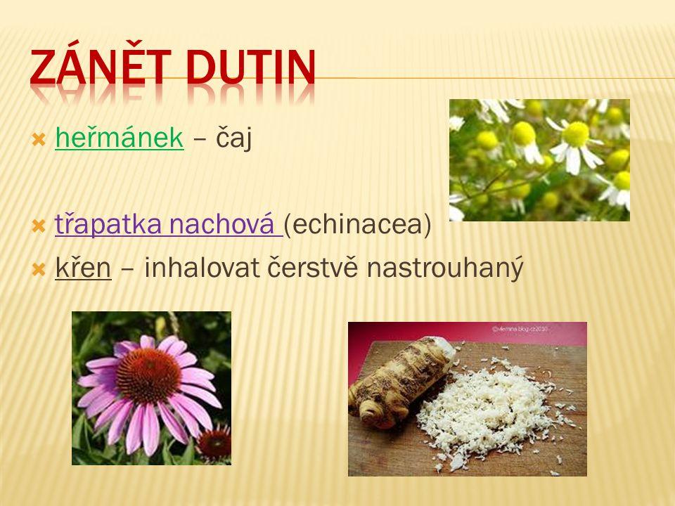  heřmánek – čaj  třapatka nachová (echinacea)  křen – inhalovat čerstvě nastrouhaný