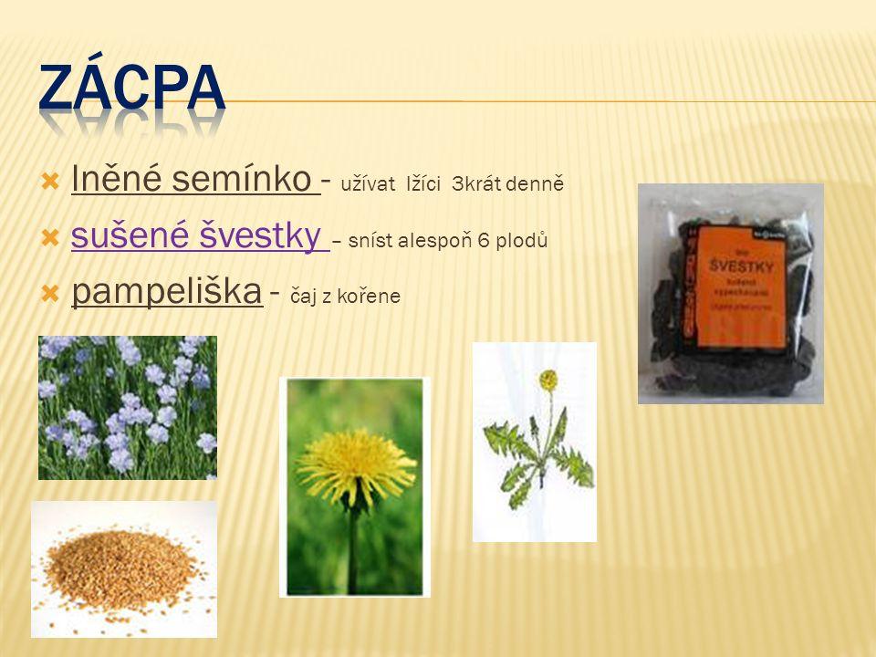  lněné semínko - užívat lžíci 3krát denně  sušené švestky – sníst alespoň 6 plodů  pampeliška - čaj z kořene