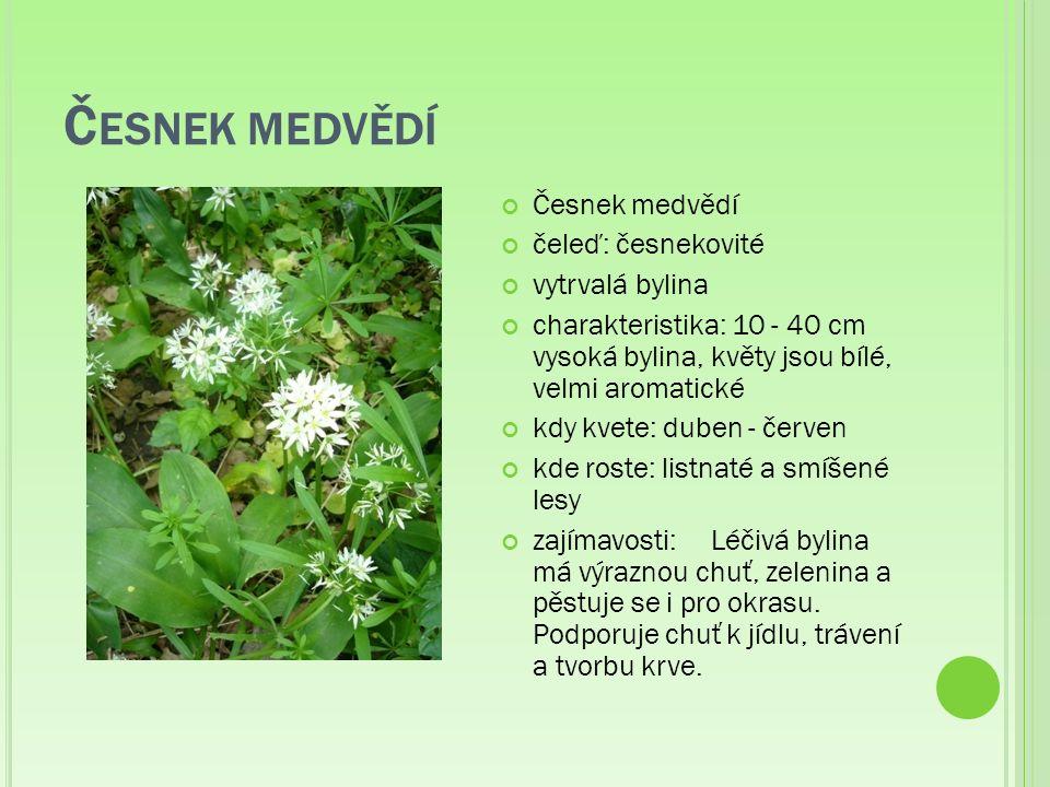 D YMNIVKA čeleď: zemědýmovité vytrvalá bylina charakteristika: 15 – 30 cm vysoká bylina, květy jsou purpurové barvy, někdy bílé kdy roste: v časném jaře kde roste: vlhké lesy zajímavosti: Lidové názvy: blúd, dýmnica, dýmnivka, holubí vole, housátka, hrbolec, hulvor, husičky, hužvor, jablko vlčí, kohouti, kohoutky, kukačka, kukučky, pižmo, podrazec, podražec bílý, podražej, podražek bílej, podražec okrouhlý, podražec červený, polní rutka planá, rostoka, séreček, slepičky, smetaník, tvarožník, zeměžluč.