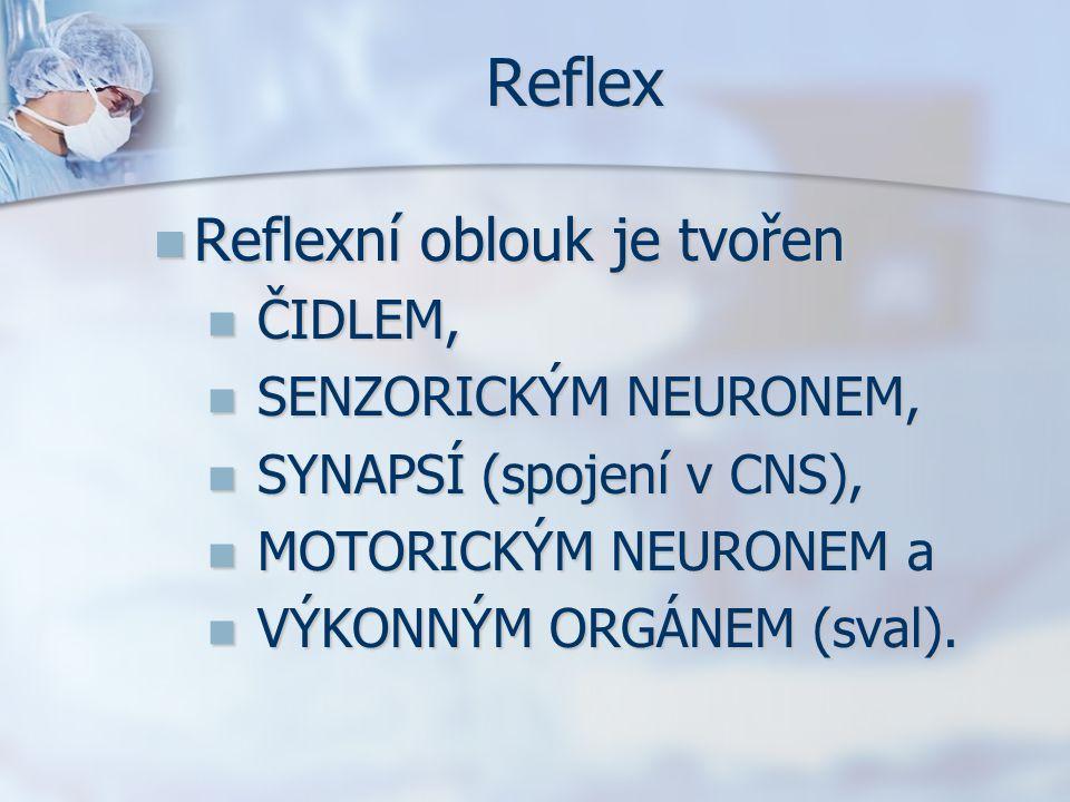 Reflex Reflexní oblouk je tvořen Reflexní oblouk je tvořen ČIDLEM, ČIDLEM, SENZORICKÝM NEURONEM, SENZORICKÝM NEURONEM, SYNAPSÍ (spojení v CNS), SYNAPS
