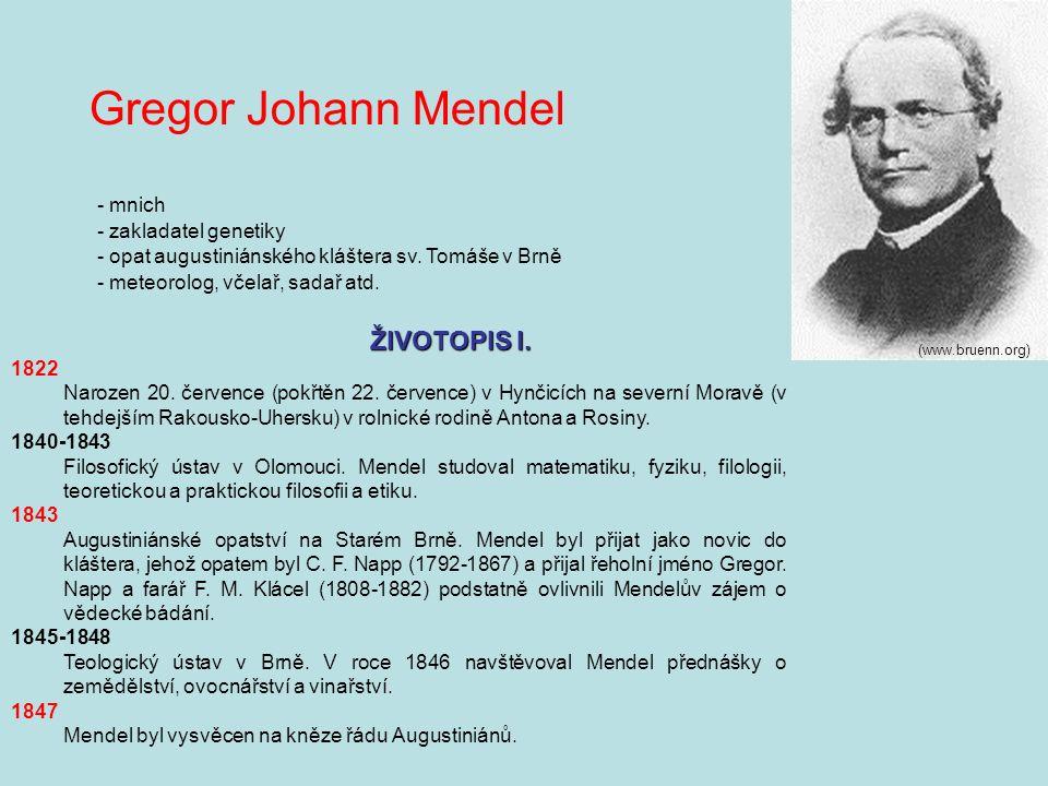 Gregor Johann Mendel (www.bruenn.org) - mnich - zakladatel genetiky - opat augustiniánského kláštera sv.