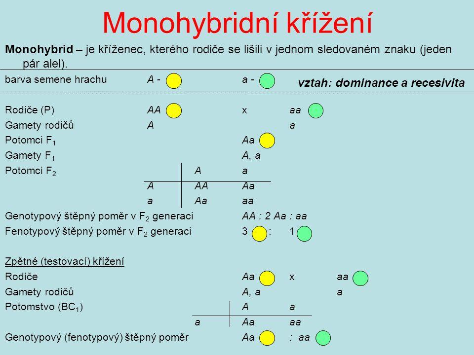 Monohybridní křížení Monohybrid – je kříženec, kterého rodiče se lišili v jednom sledovaném znaku (jeden pár alel).