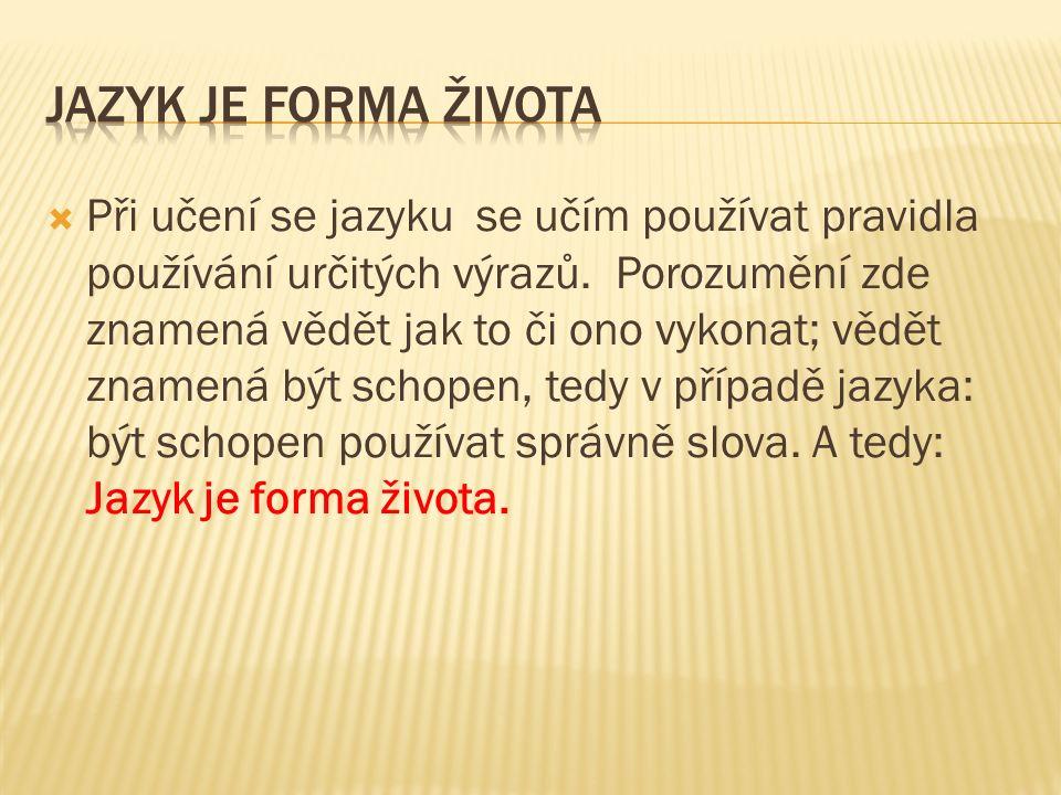  Při učení se jazyku se učím používat pravidla používání určitých výrazů.