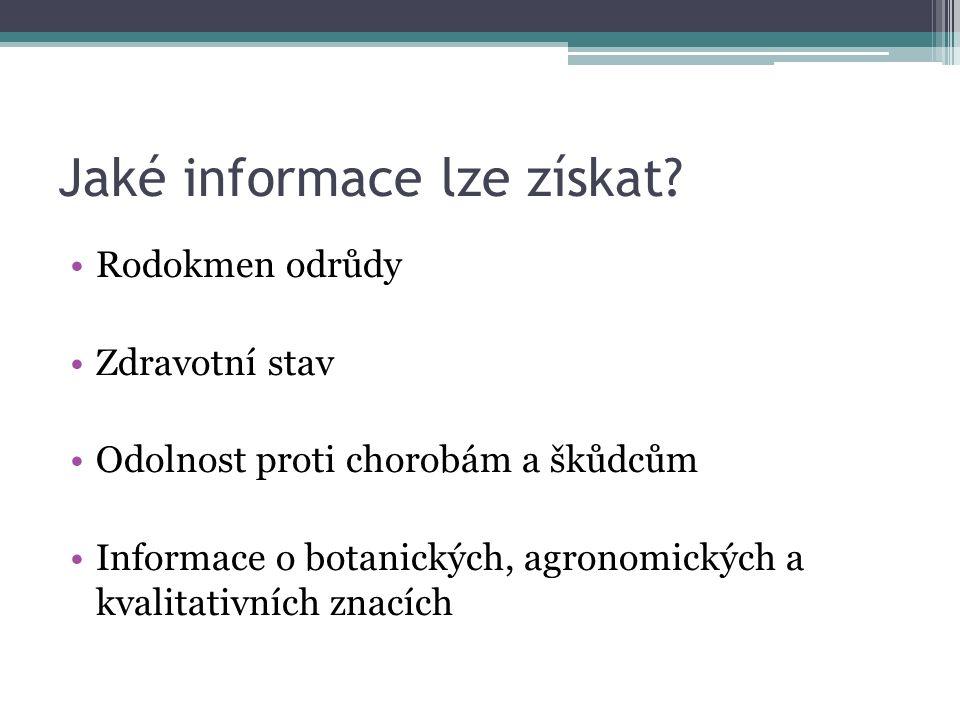 Jaké informace lze získat.