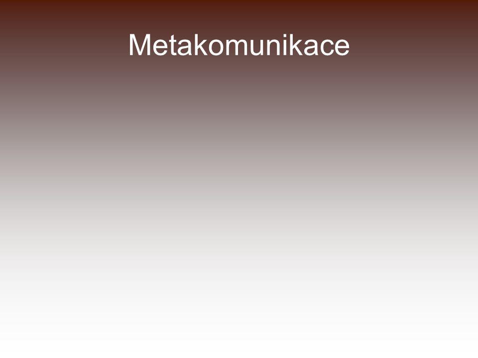 Metakomunikace