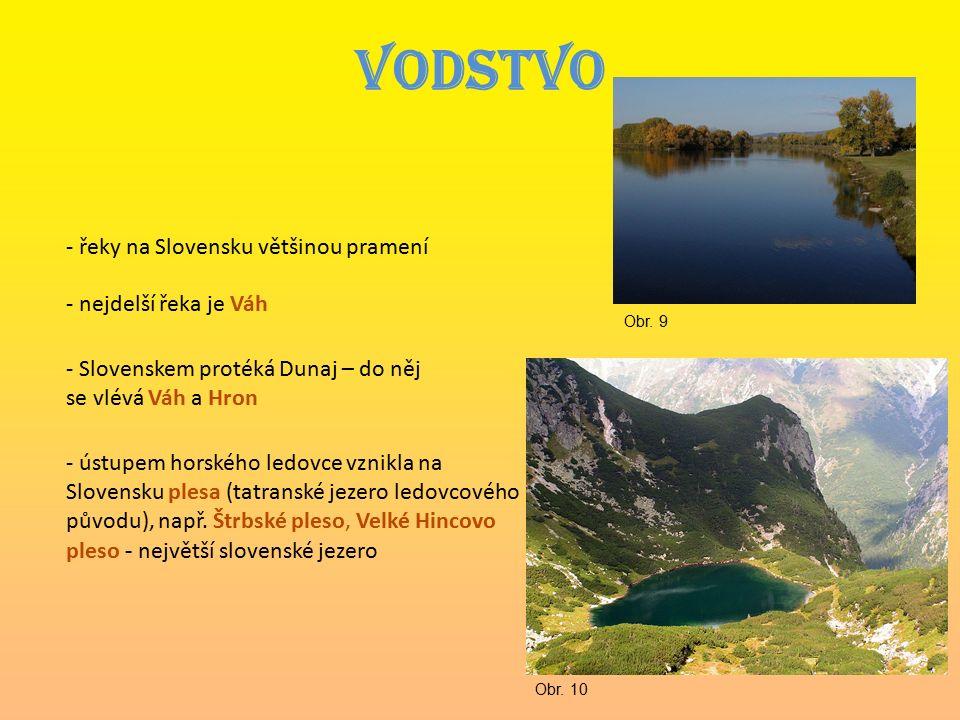VODSTVO - řeky na Slovensku většinou pramení - nejdelší řeka je Váh - Slovenskem protéká Dunaj – do něj se vlévá Váh a Hron - ústupem horského ledovce vznikla na Slovensku plesa (tatranské jezero ledovcového původu), např.
