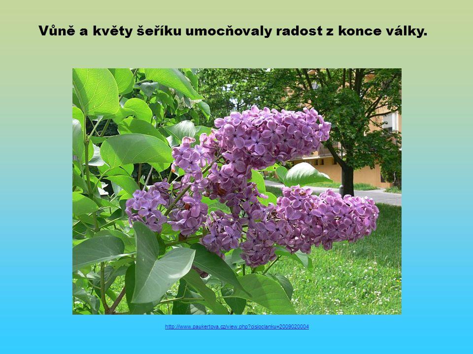 http://www.paukertova.cz/view.php cisloclanku=2009020004 Vůně a květy šeříku umocňovaly radost z konce války.