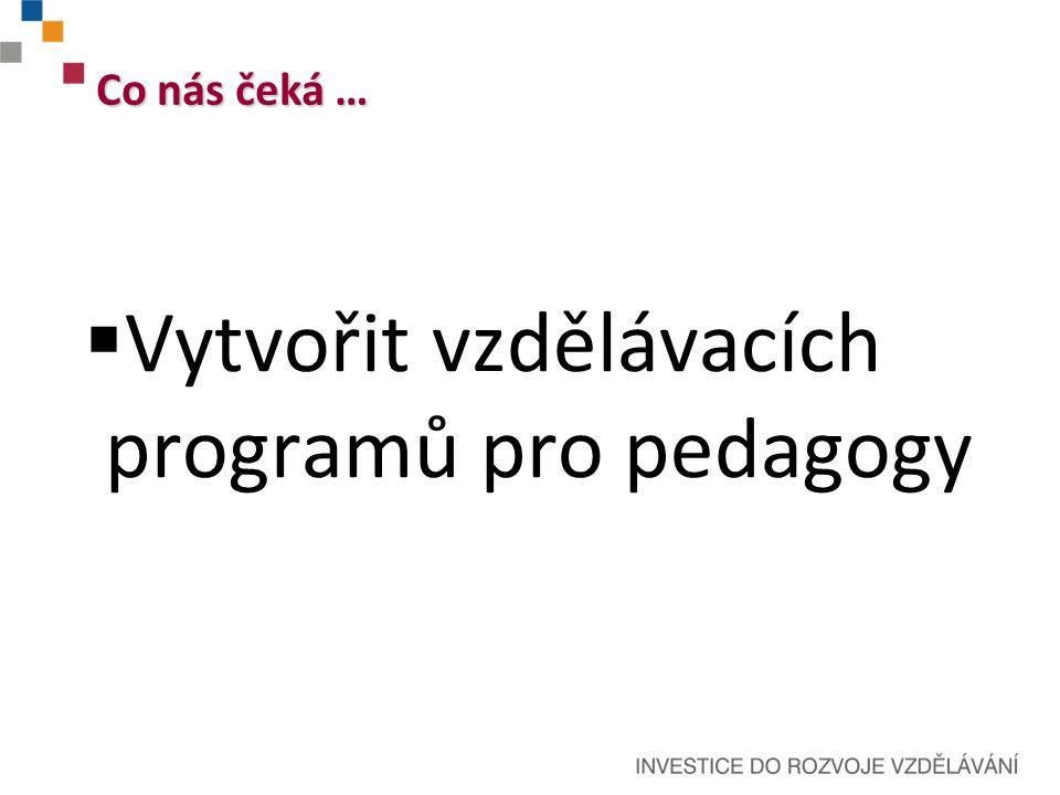  Vytvořit vzdělávacích programů pro pedagogy Co nás čeká …