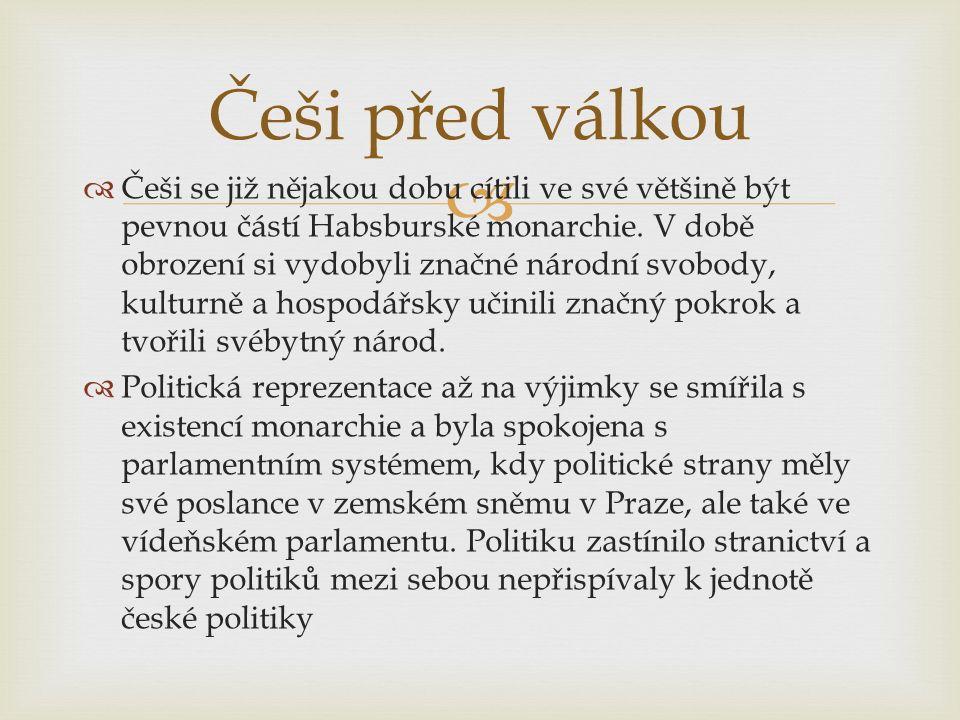   česká společnost byla válkou zaskočena, zmítala se mezi věrností císaři a sympatiemi k slovanskému Srbsku a Rusku.