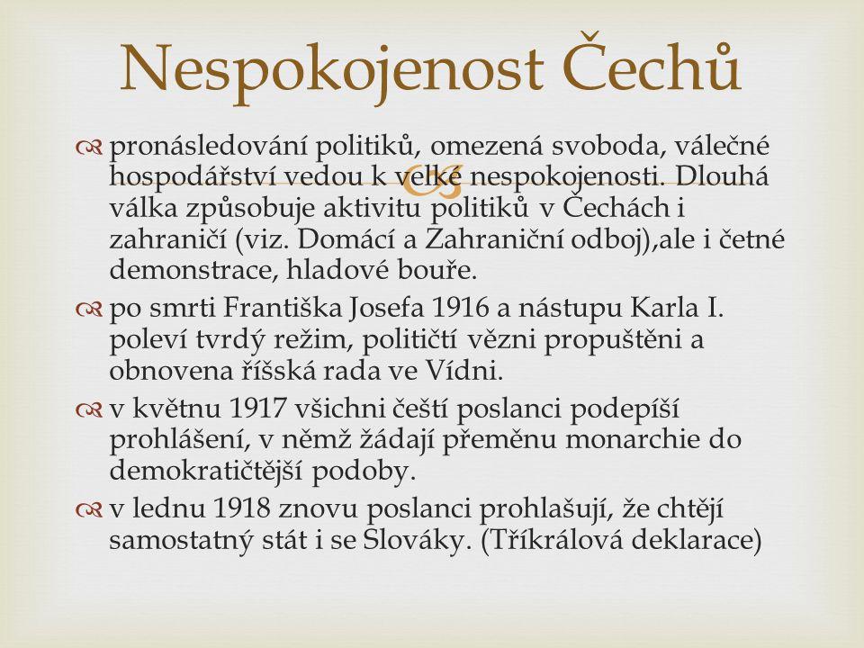   Nespokojenost Němců, Maďarů, Poláků s tím, že jsou ve státě, ve kterém žít nechtějí, vede k špatným vztahům k Německu, Rakousku, Maďarsku a Polsku.
