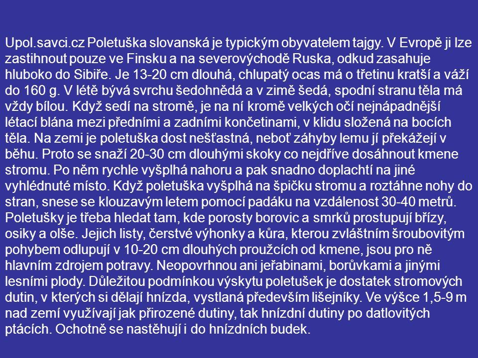 Upol.savci.cz Poletuška slovanská je typickým obyvatelem tajgy. V Evropě ji lze zastihnout pouze ve Finsku a na severovýchodě Ruska, odkud zasahuje hl