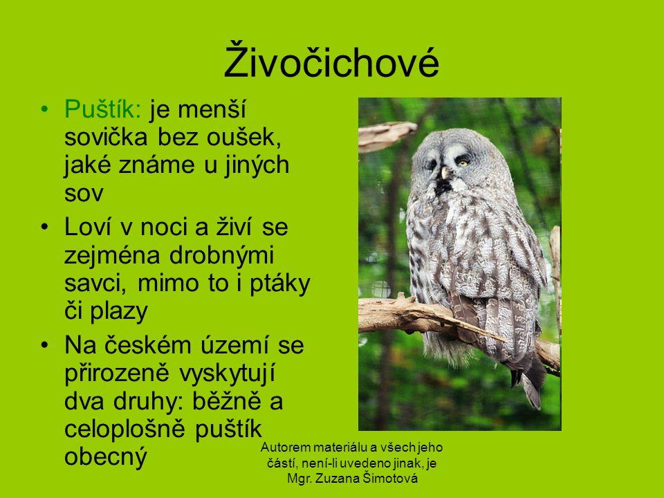 Odkazy http://commons.wikimedia.org/wiki/File:Kalous_u%C5%A1at%C3%BD_%28zoo_Sv.Kop e%C4%8Dek-_czech_republic%29.JPG http://commons.wikimedia.org/wiki/File:Li%C5%A1ka_obecn%C3%A1.jpg?uselang=cs http://commons.wikimedia.org/wiki/File:Strix_nebulosa_Zoo_Praha_2011-5.jpg Autorem materiálu a všech jeho částí, není-li uvedeno jinak, je Mgr.