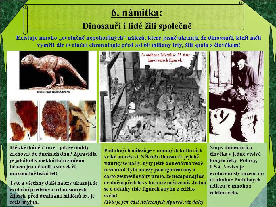 Měkké tkáně T-rexe - jak se mohly zachovat do dnešních dnů? Zpravidla je jakákoliv měkká tkáň zničena během jen několika stovek či maximálně tisíců le