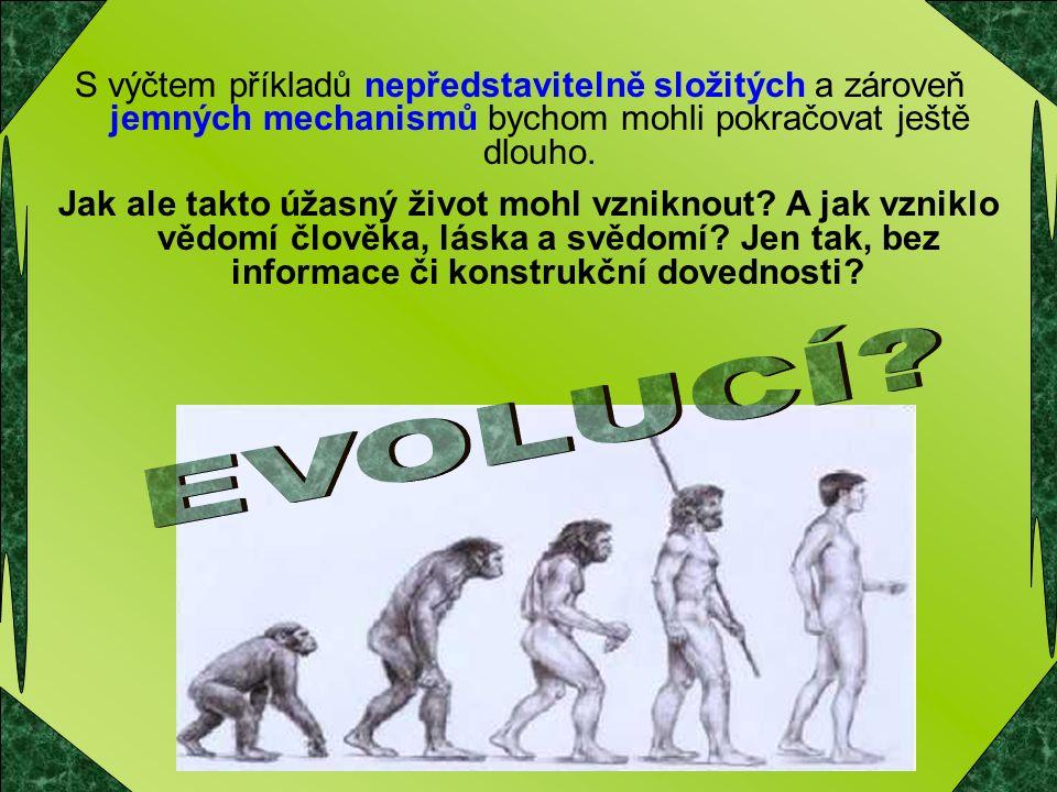 """Posuďte sami Evoluční teorie říká ve zkratce toto: """" Když necháme kamení a horninu ležet na nějaké planetě dostatečně dlouho, může se proměnit na lidi a přírodu."""