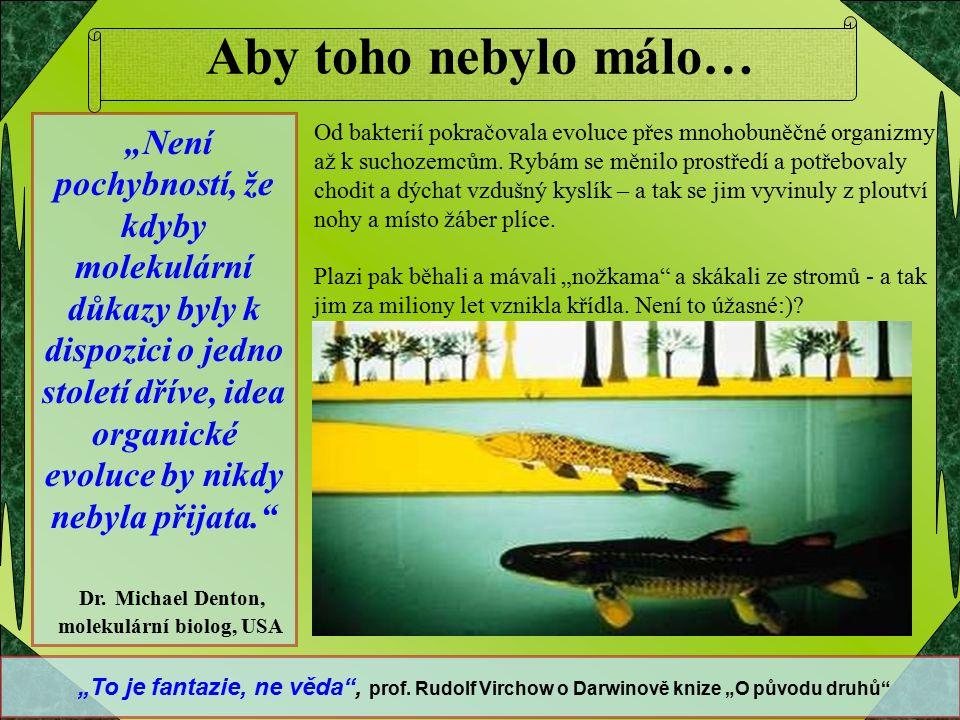"""www.kreacionismus.cz Obsahově trochu odlišné jsou pak stránky, které se zabývají smyslem života a ostatními jevy www.zivot-nazory.blog.cz Děkujeme za váš čas Je nám jasné, že se Vám mohou předchozí skutečnosti zdát až """"bláznivé a nemusíte s nimi souhlasit."""