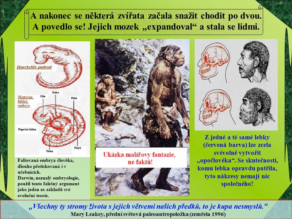 Tisíce odborníků po celém světě odmítají evoluční teorii, protože odporuje mnoha vědeckým poznatkům.