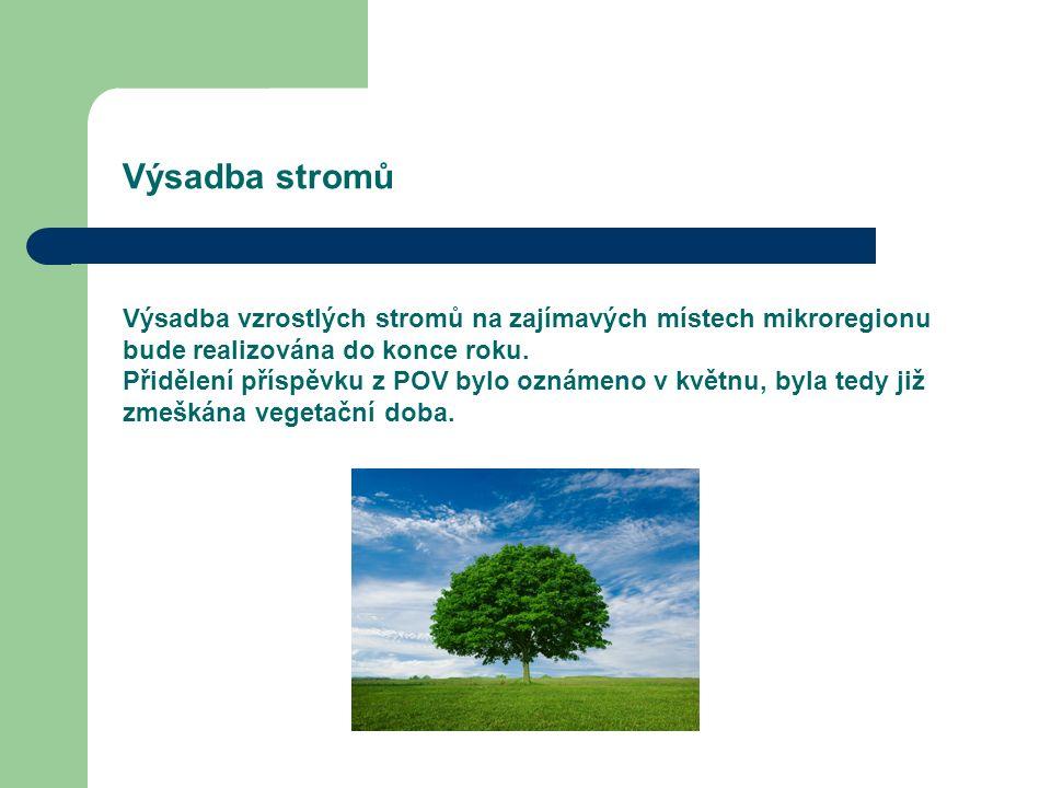 Výsadba stromů Výsadba vzrostlých stromů na zajímavých místech mikroregionu bude realizována do konce roku.