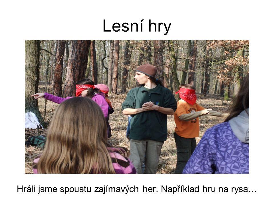Lesní hry Hráli jsme spoustu zajímavých her. Například hru na rysa…