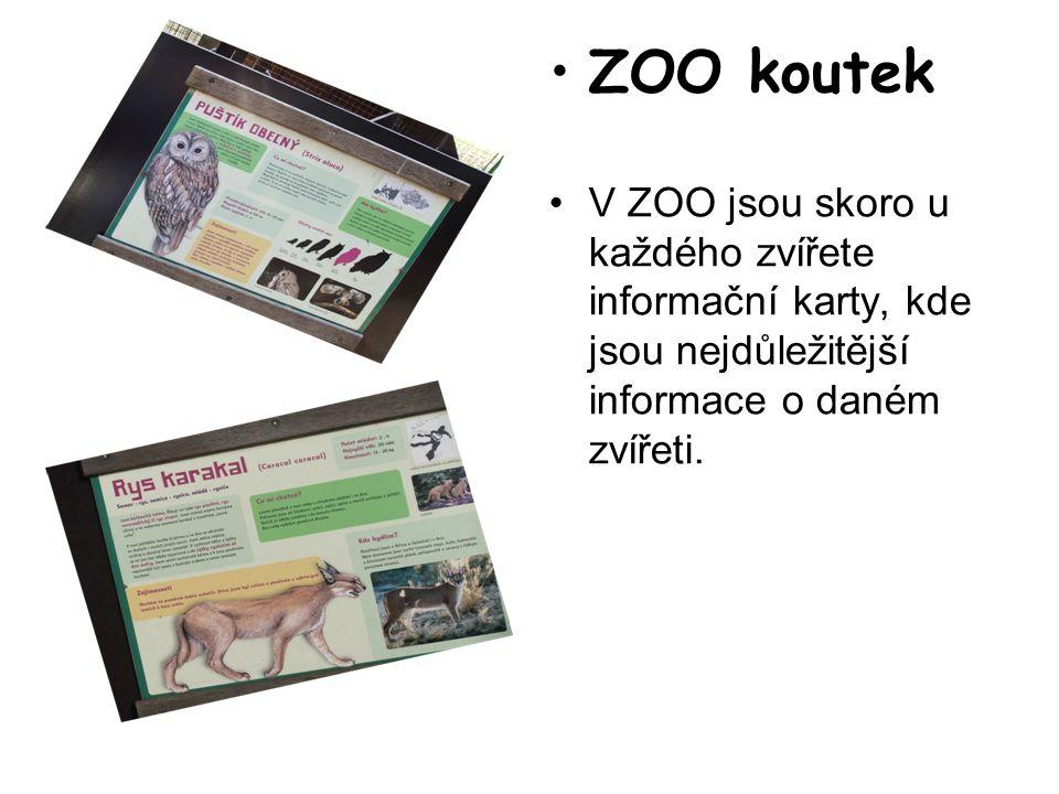 ZOO koutek V ZOO jsou skoro u každého zvířete informační karty, kde jsou nejdůležitější informace o daném zvířeti.