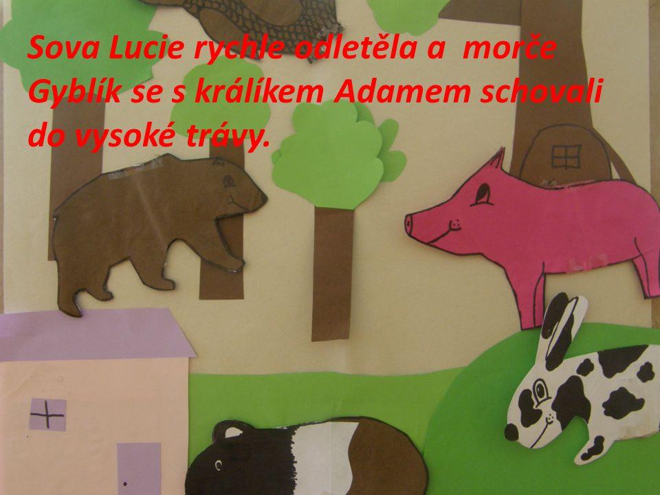 Sova Lucie rychle odletěla a morče Gyblík se s králíkem Adamem schovali do vysoké trávy.