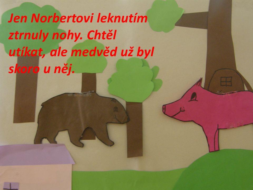 Jen Norbertovi leknutím ztrnuly nohy. Chtěl utíkat, ale medvěd už byl skoro u něj.