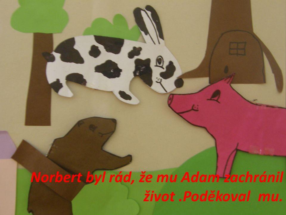 Norbert byl rád, že mu Adam zachránil život.Poděkoval mu.