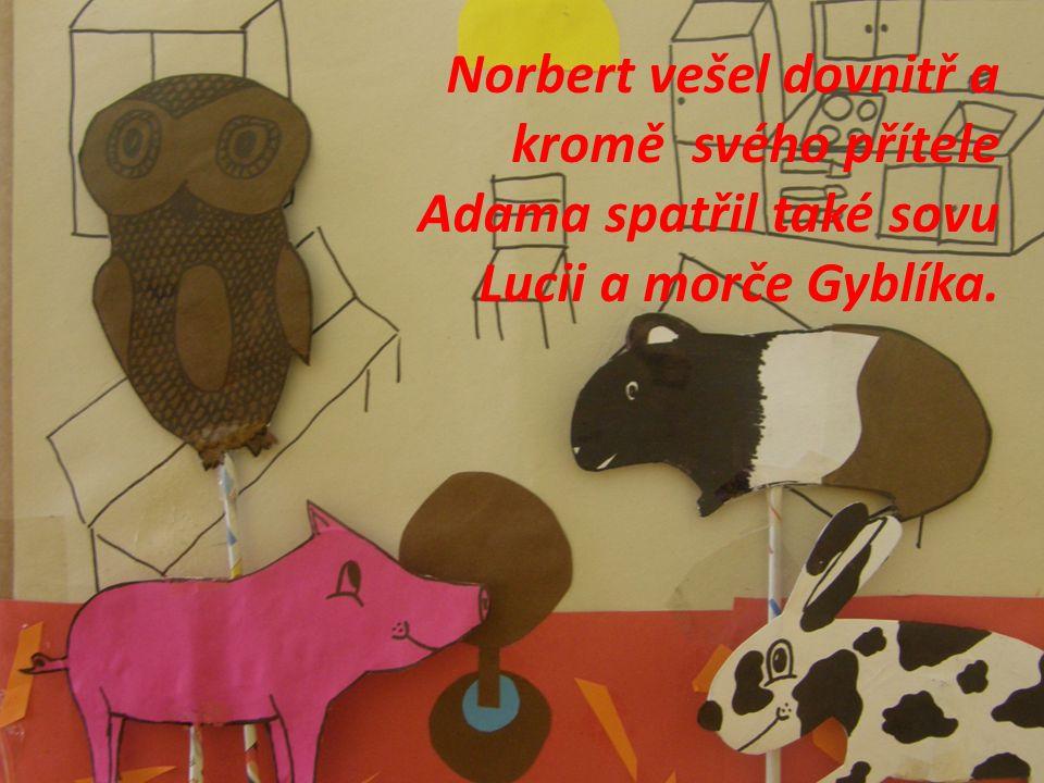 Norbert vešel dovnitř a kromě svého přítele Adama spatřil také sovu Lucii a morče Gyblíka.