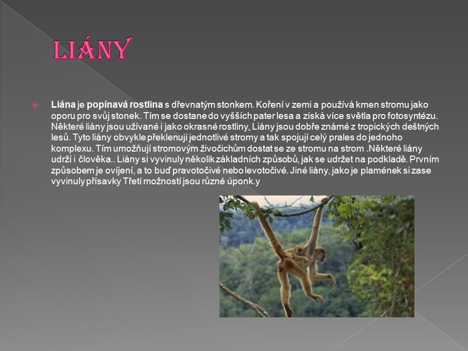  Liána je popínavá rostlina s dřevnatým stonkem. Koření v zemi a používá kmen stromu jako oporu pro svůj stonek. Tím se dostane do vyšších pater lesa