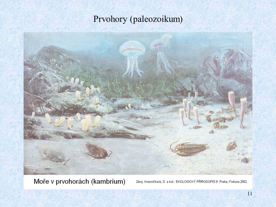 11 Prvohory (paleozoikum)