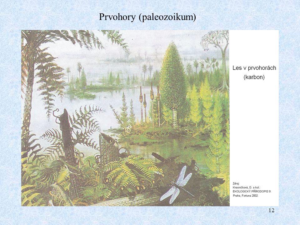 12 Prvohory (paleozoikum)