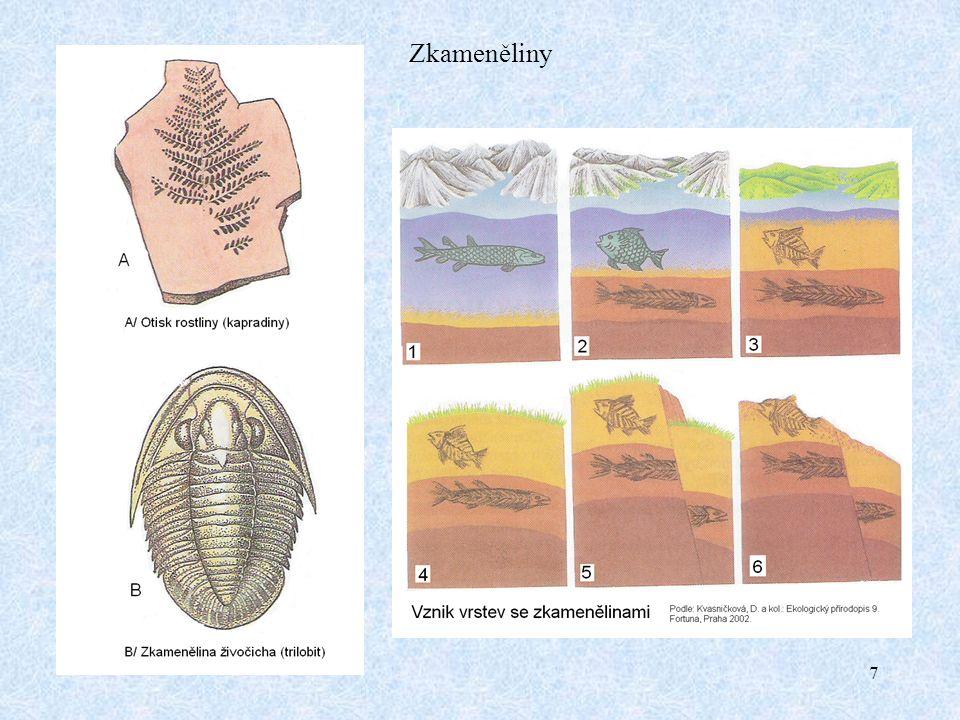 8 Prvohory (paleozoikum) Základní charakteristika Spodní časová hranice: 580 milionů let Horní časová hranice: 225 milionů let Délka trvání celé éry: 355 milionů let (též 345 milionů let) Členění na periody: kambrium, ordovik, silur, devon (starší prvohory) karbon, perm (mladší prvohory) Éra rozvoje členovců (trilobiti, hmyz aj.) Věk rybovitých obratlovců (paryby, ryby) Éra přechodu živočichů na souš (obojživelníci, první plazi) Éra přechodu rostlin na souš (karbonské stromovité kapraďorosty a nahosemenné rostliny) Éra četných vrásnění, při kterých vznikla severní a střední Evropa (např.