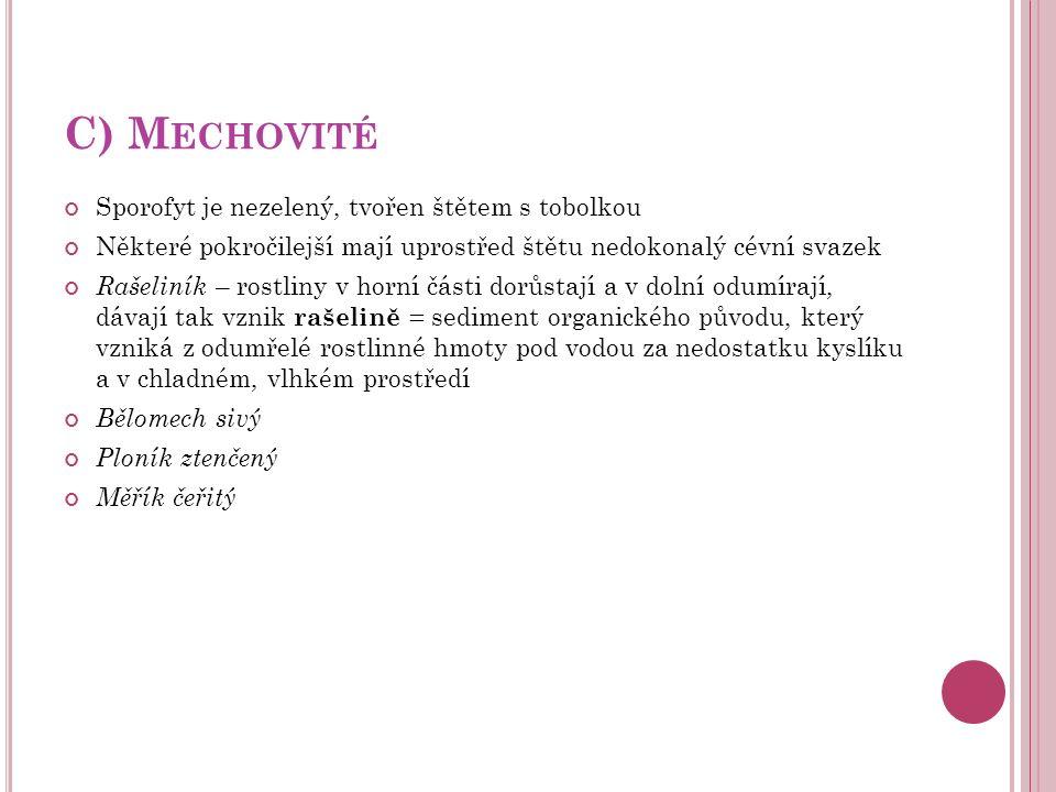 C) M ECHOVITÉ Sporofyt je nezelený, tvořen štětem s tobolkou Některé pokročilejší mají uprostřed štětu nedokonalý cévní svazek Rašeliník – rostliny v
