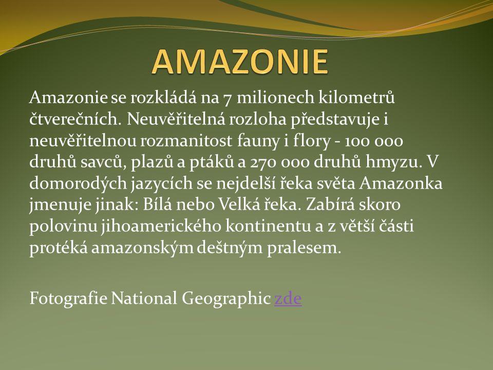 Amazonie se rozkládá na 7 milionech kilometrů čtverečních.