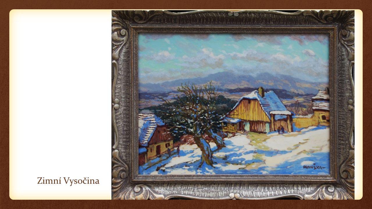 Zimní Vysočina