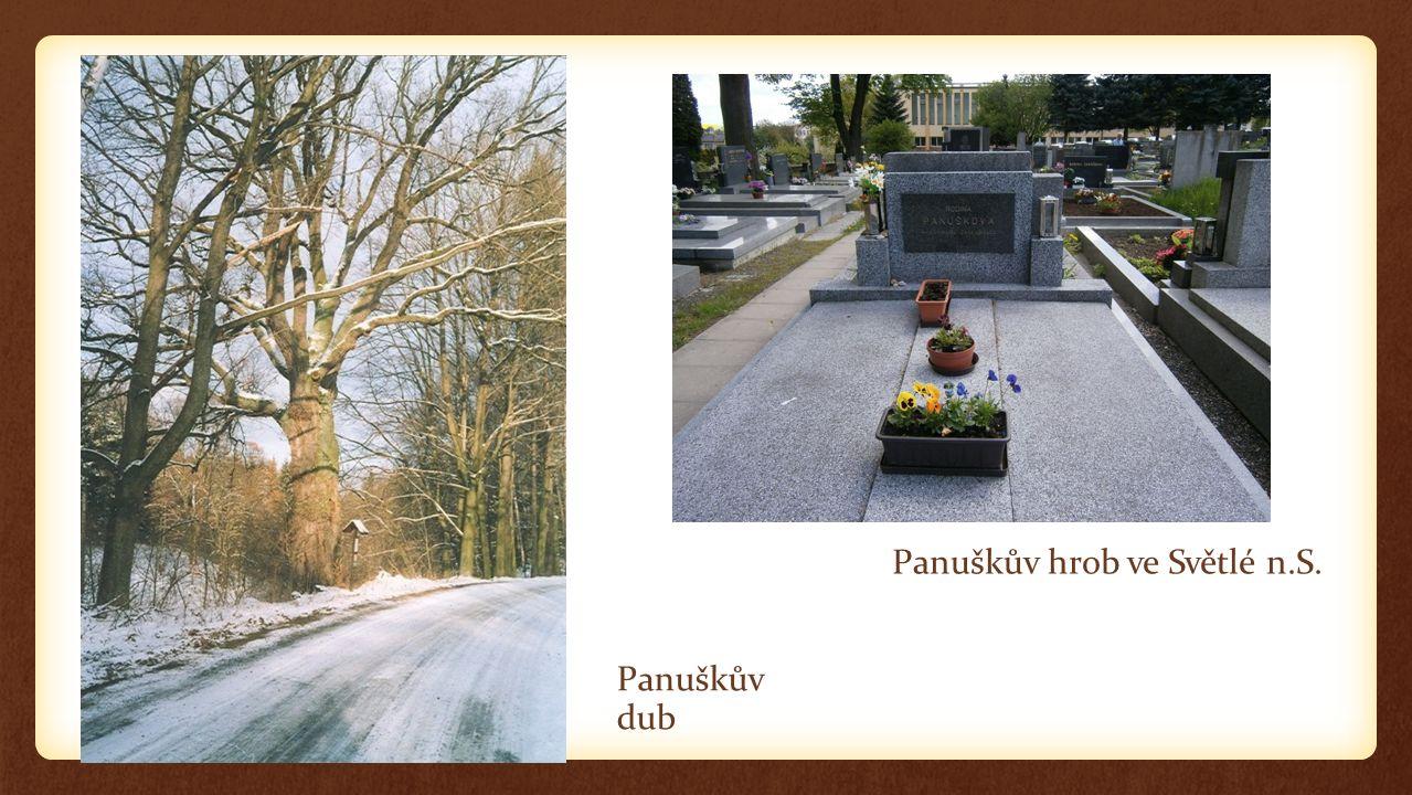 Panuškův dub Panuškův hrob ve Světlé n.S.