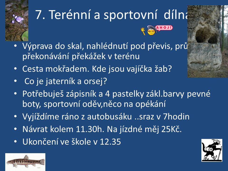 8.Sportovní dílna DOPOLEDNE PLNÉ HER, SOUTĚŽÍ A NEVŠEDNÍCH ZÁŽITKŮ PRO VÁS PŘIPRAVÍ SPOLUŽÁCI Z 8.