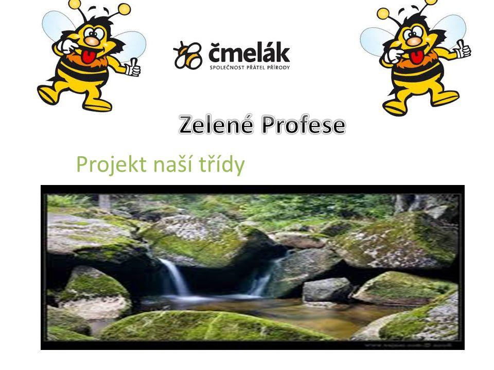 ZŠ a ZUŠ Jabloňová,Liberec Naše škola je z části hudební Hudbou se vždy zabývá jen 1 až 9 třída B.