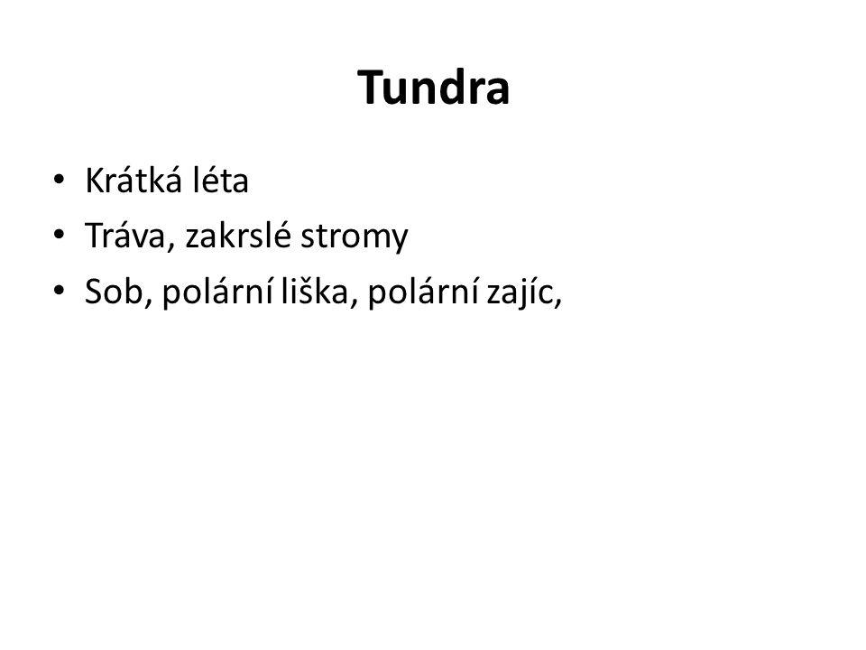 Tundra Krátká léta Tráva, zakrslé stromy Sob, polární liška, polární zajíc,