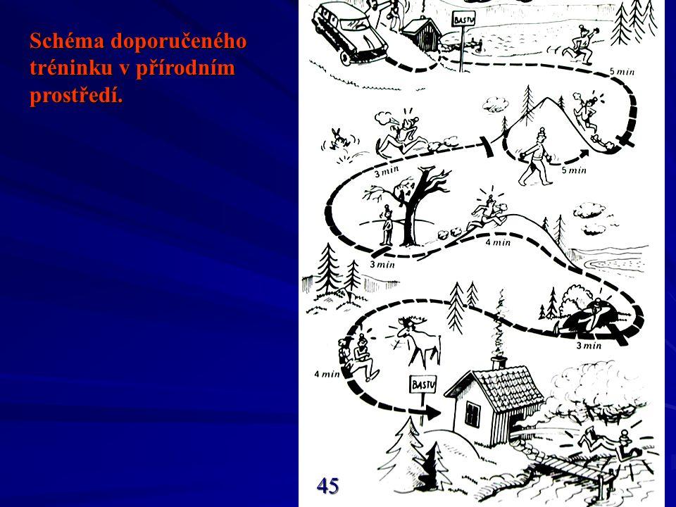 Schéma doporučeného tréninku v přírodním prostředí. 45