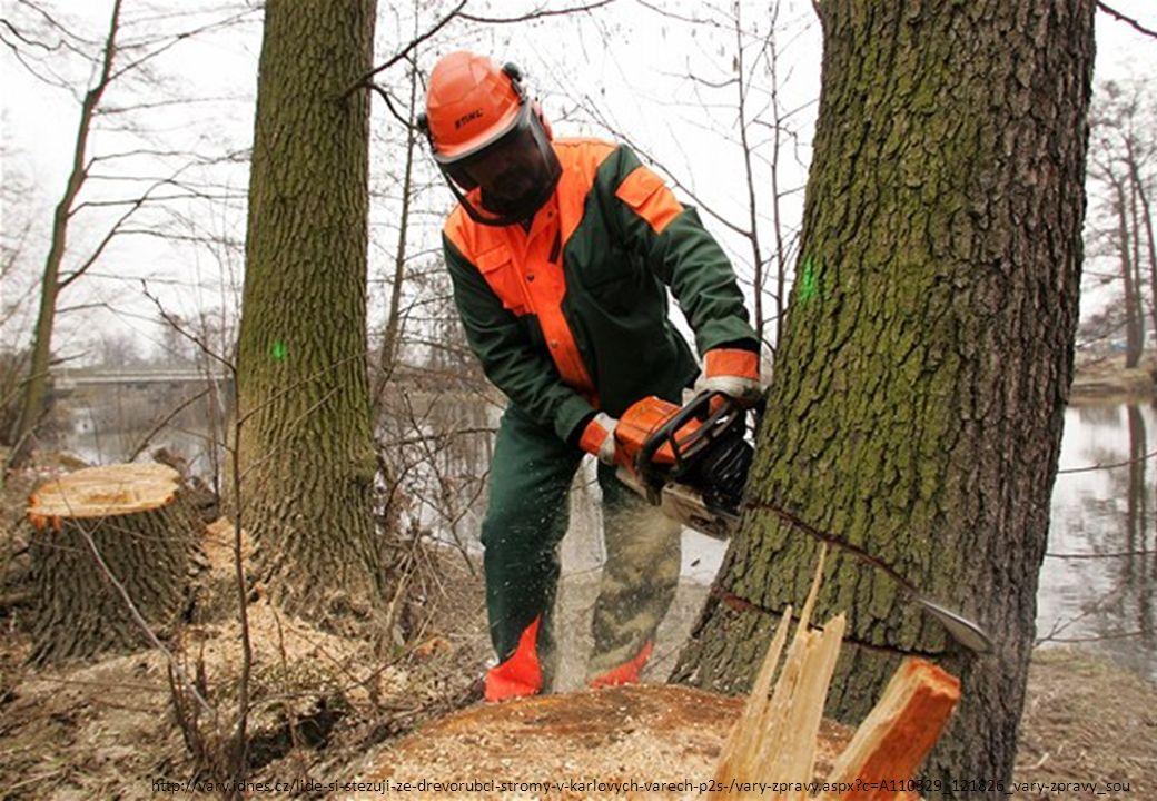 http://vary.idnes.cz/lide-si-stezuji-ze-drevorubci-stromy-v-karlovych-varech-p2s-/vary-zpravy.aspx?c=A110329_121826_vary-zpravy_sou