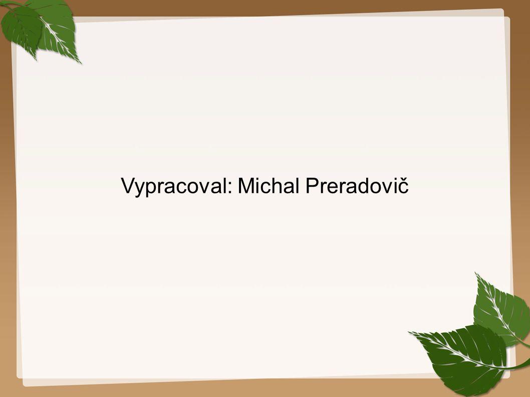 Vypracoval: Michal Preradovič