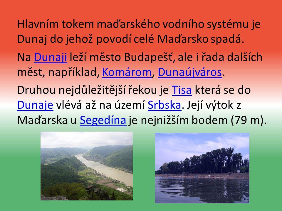 Hlavním tokem maďarského vodního systému je Dunaj do jehož povodí celé Maďarsko spadá.