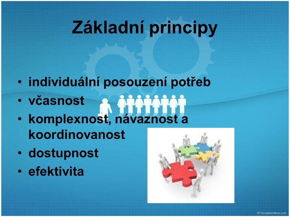Základní principy individuální posouzení potřeb včasnost komplexnost, návaznost a koordinovanost dostupnost efektivita
